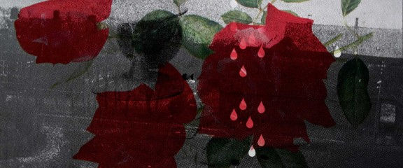 bpcd010-04-rose-tarer